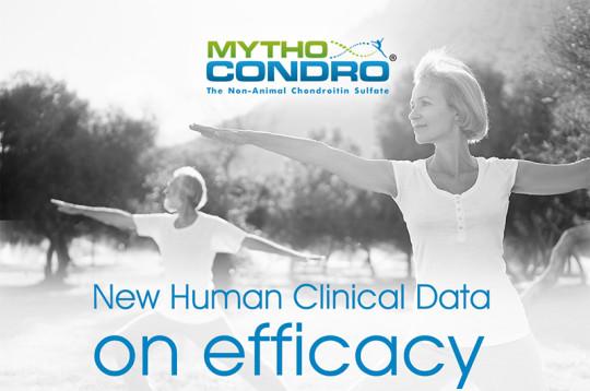 Mythocondro хондроитин