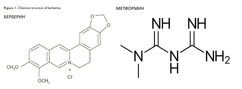 Формула молекулы метформин и берберин