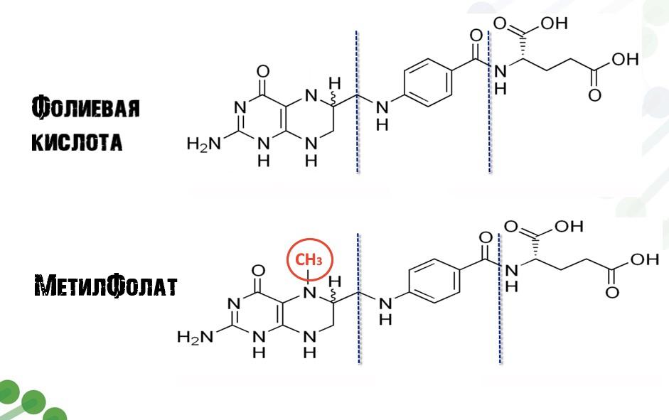 Метафолин или фолиевая кислота