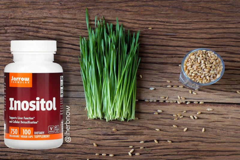 Полезные свойства и усвоение мио-инозитола — как принимать