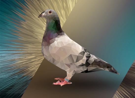 polygonal_pigeon