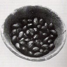 bowl_of_olives
