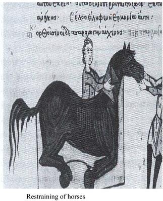 Restraining of horses - Kassianos Vassos
