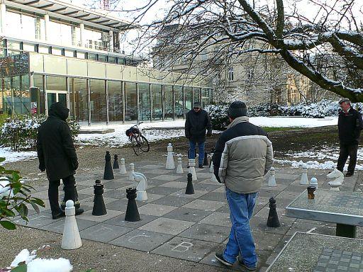 шахматеры