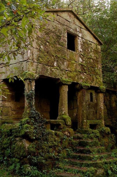 покинутый дом