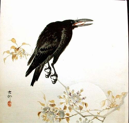 Ворона 2