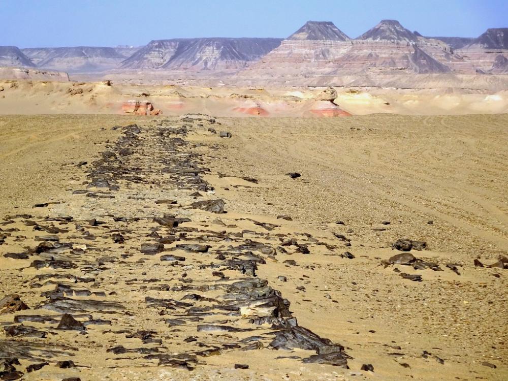 Мощеная дорога Хеопса. the-quarry-road-view