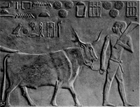 57-The-ox-herd