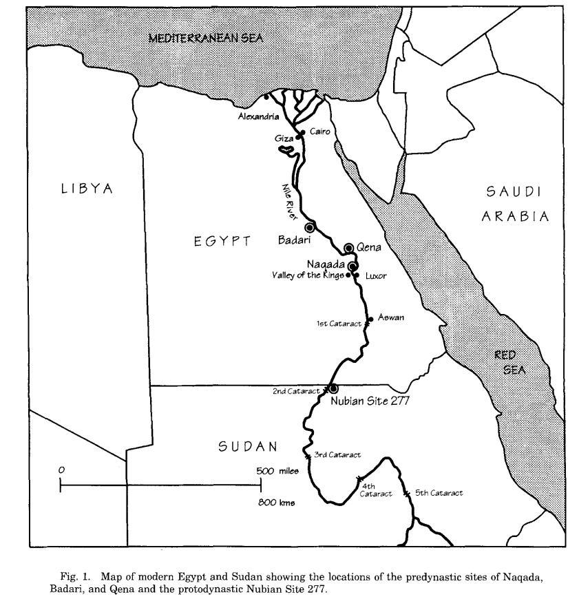 Египет - сравнение черепов0