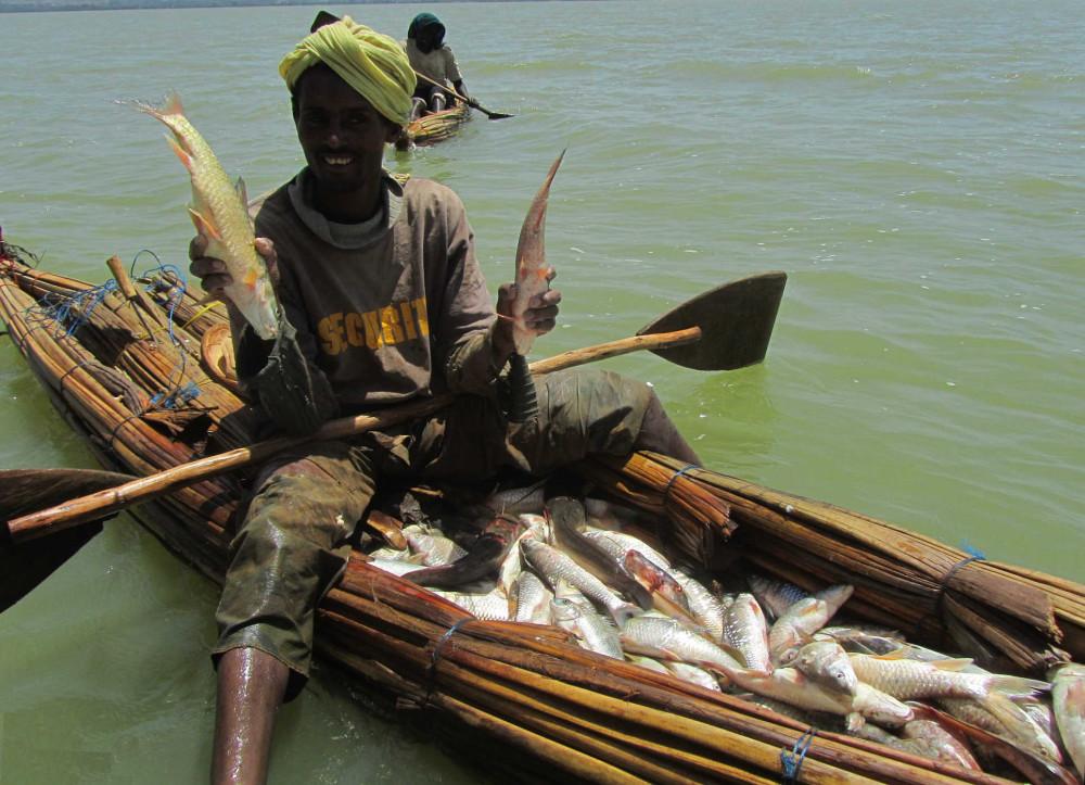 lake-tana-fisherman-papyrus-reed-boat-tankwa