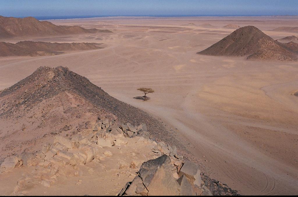 Egypt_-_Eastern_Desert_by_the_Red_Sea.jpg
