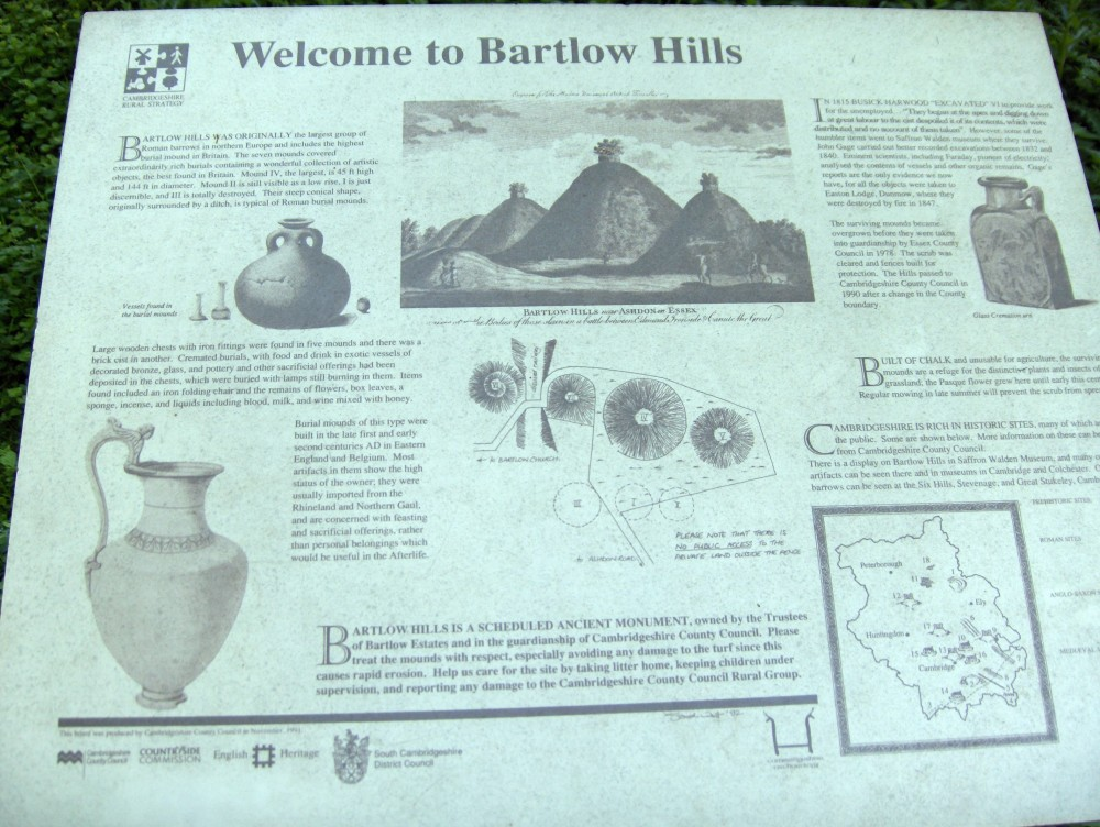 4ee8d68ef011c_bartlow-burial-mounds-engraving.jpg