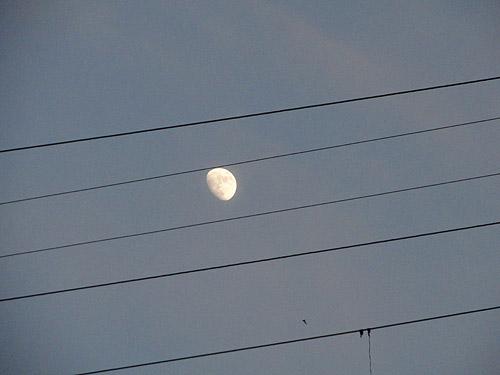 http://pics.livejournal.com/aldashin/pic/0017zd5a