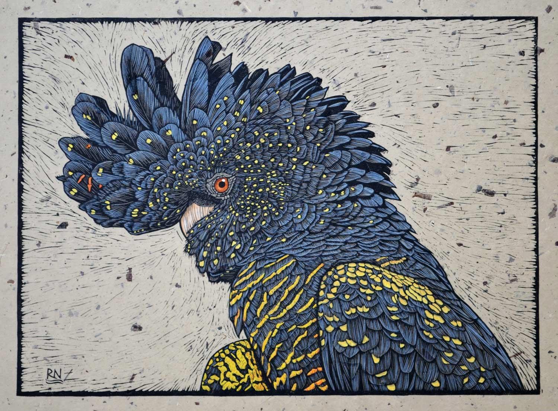 red-tailed-black-cockatoo-portrait-linocut-rachel-newling
