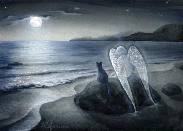 Angel-Koshka-Luna002-642-A-1