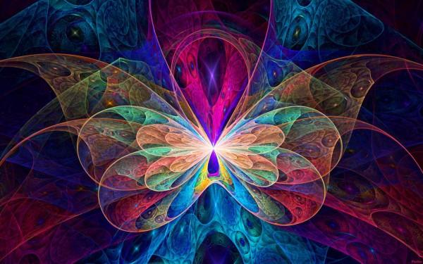 butterfly-effect-11772