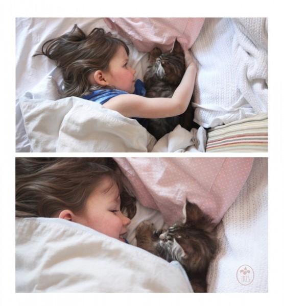 Пятилетняя художница Айрис из Великобритании - аутист. Девочке трудно общаться со сверстниками. Однако, у Айрис есть лучший друг - кот породы мейн-кун по имени Тула. Ребенок общается с людьми только тогда, когда ее пушистый товарищ рядом.