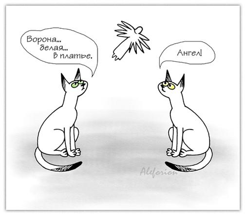 Pessimist-Yoshkin-Kot-A-444