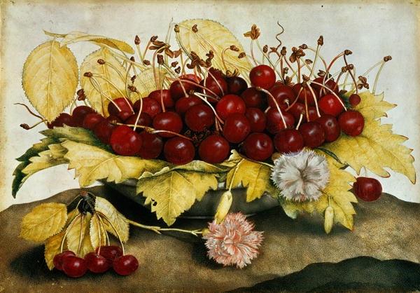 Giovanna Garzoni (Italian Baroque Era Painter, 1600-1670) Cherries and Carnations