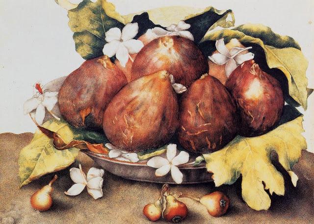 Giovanna Garzoni (Italian Baroque Era Painter, 1600-1670) Figs