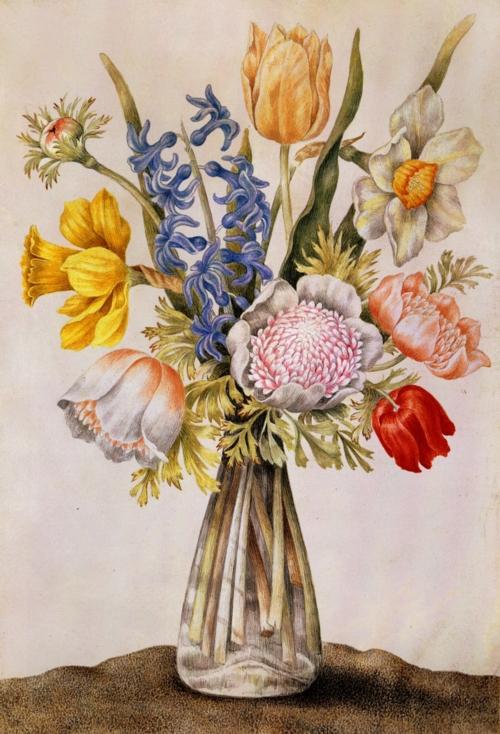 Giovanna Garzoni (Italian Baroque Era Painter, 1600-1670) Vase 3