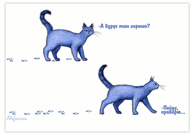 Blue-Catss-1-444-A
