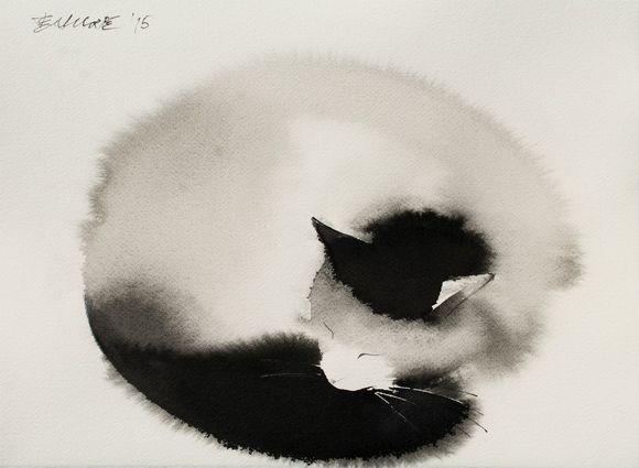 cat13 - копия