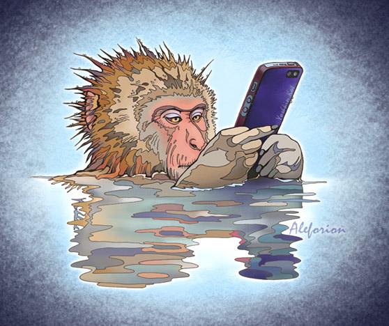 Mjnkey-Mobile-500-A.