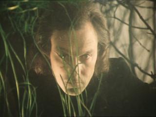 Oleg Yankovsky as Johnatan Swift