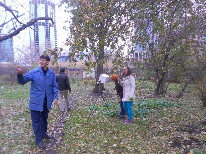 дюпоноскоп в яблоневом саду