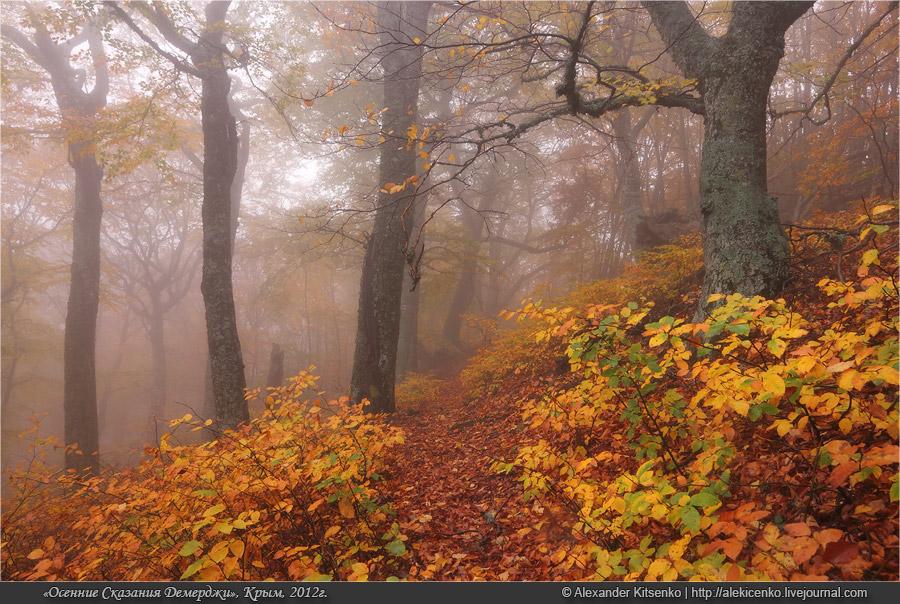 097_demerdji_10_2012-web-800