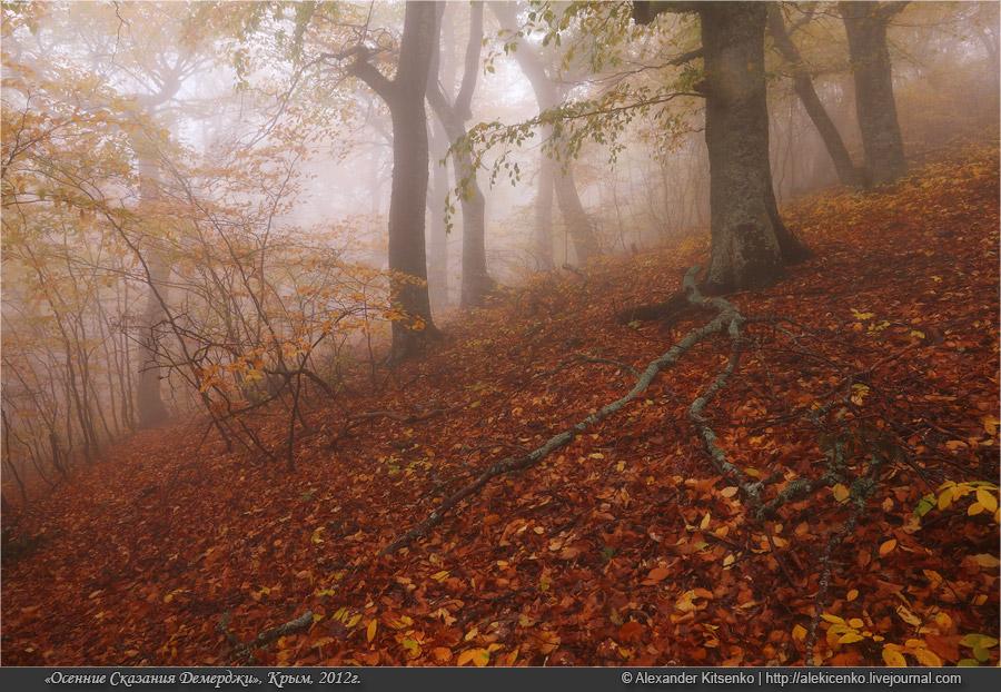 102_demerdji_10_2012-web-800