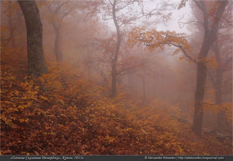 105_demerdji_10_2012-web-800