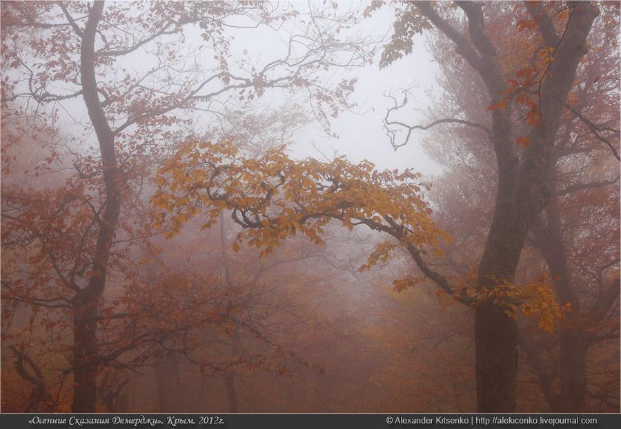 106_demerdji_10_2012-web-800