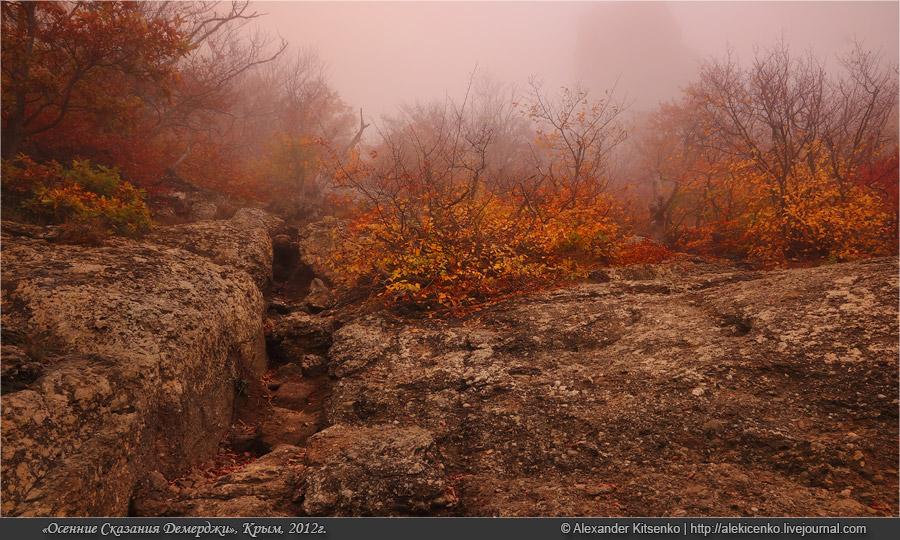 129_demerdji_10_2012-web-800