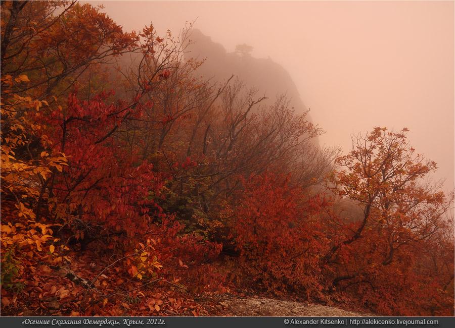 130_demerdji_10_2012-web-800