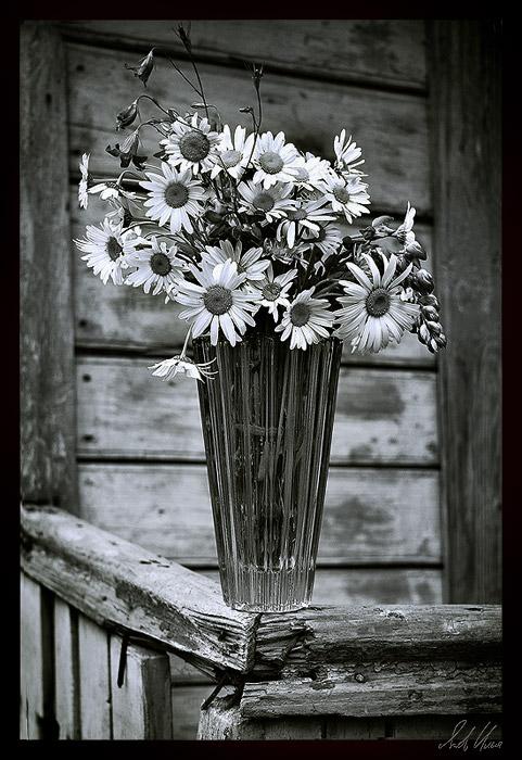 Любителям черно-белой фотографии не может не понравиться... 9