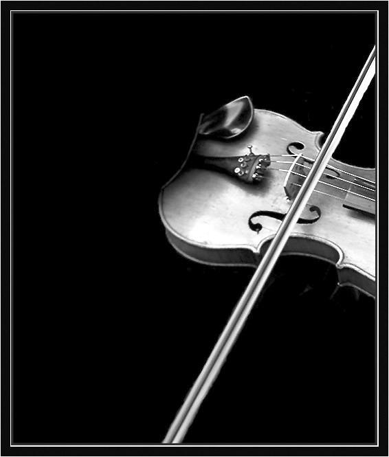 Любителям черно-белой фотографии не может не понравиться... 13
