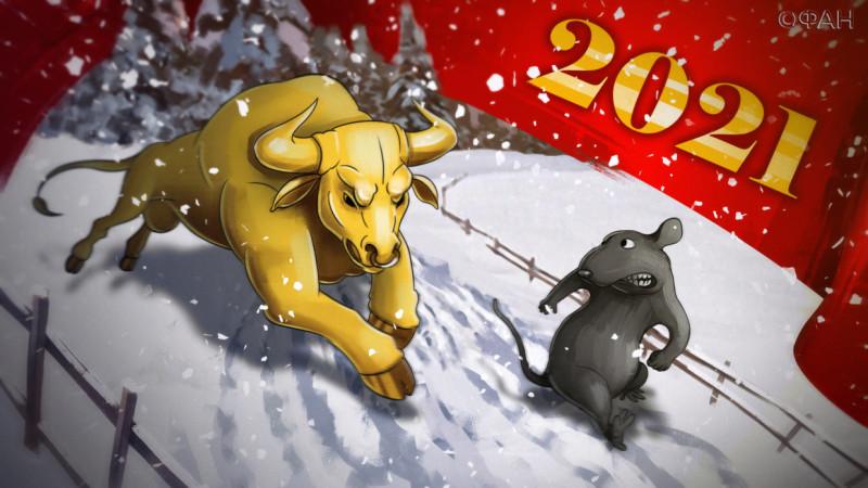 бык против крысы 2