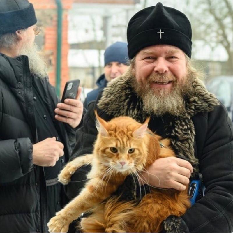 _vladyka_the_cat_153339801_333641388050236_6122468003118457719_n