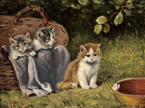 Drei junge Kätzchen auf der Wiese