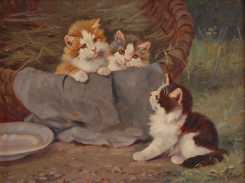 Drei junge Kätzchen