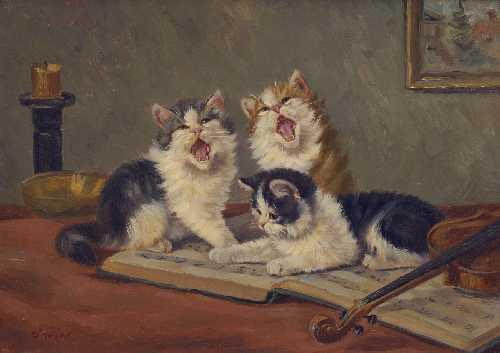 Katzenmusik.