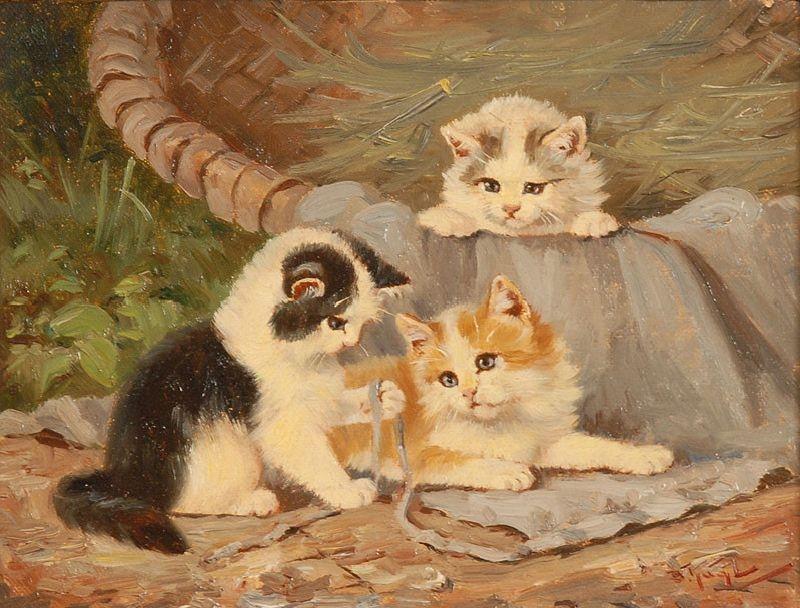 Spielende Kätzchen q