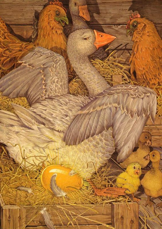 fop-(11)DonDaily-Aesop-Goose-GoldenEgg