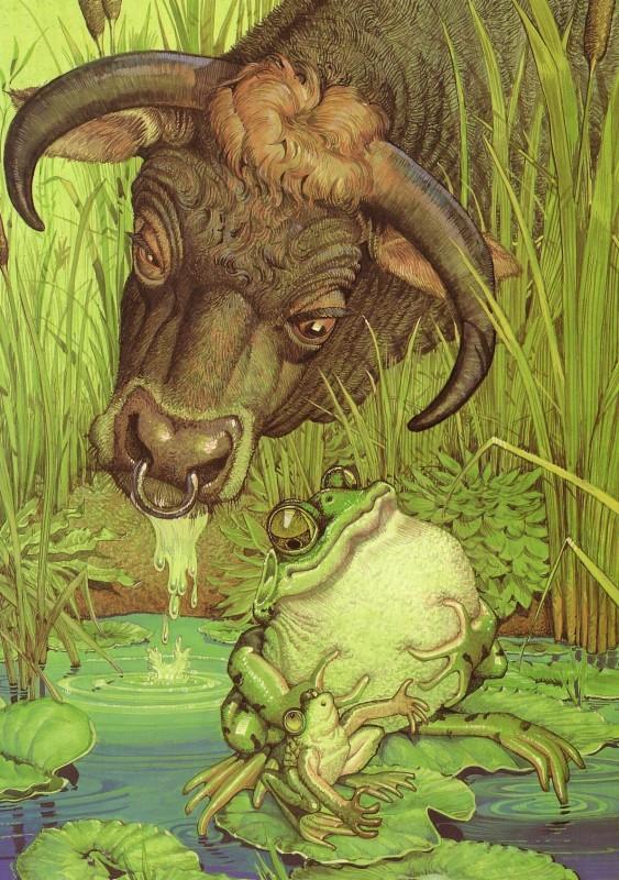 fop-(16)DonDaily-Aesop-Bull-Bullfrog