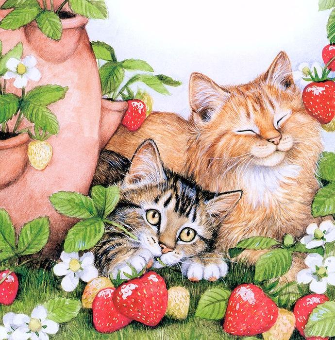 Дебби Кук и её пушистые рисунки 3