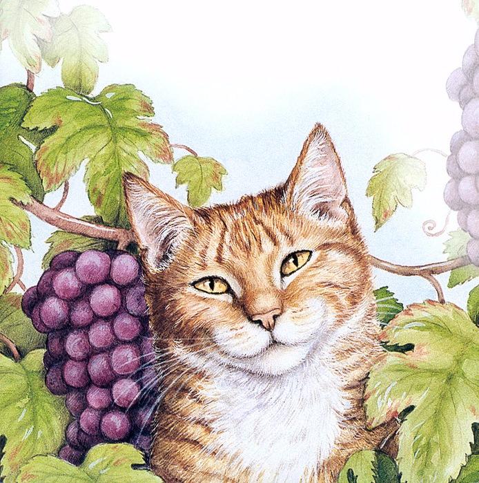 Дебби Кук и её пушистые рисунки 4