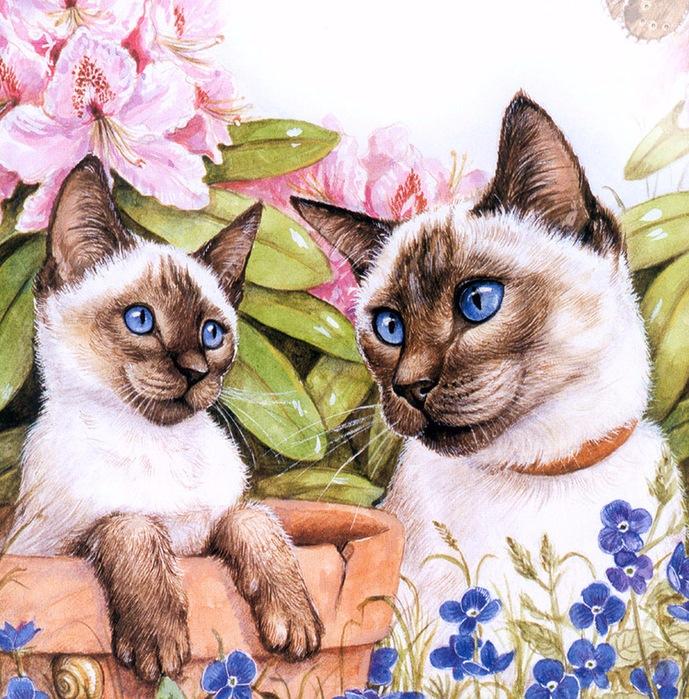 Дебби Кук и её пушистые рисунки 5