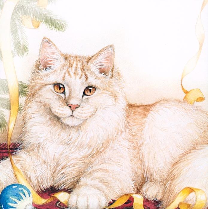 Дебби Кук и её пушистые рисунки 6